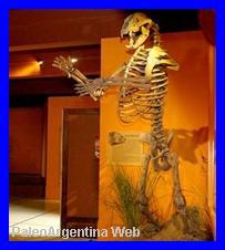 http://www.grupopaleo.com.ar/paleoargentina/arctotheriumesq.JPG
