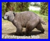 http://www.grupopaleo.com.ar/paleoargentina/chapadmalania2.jpg